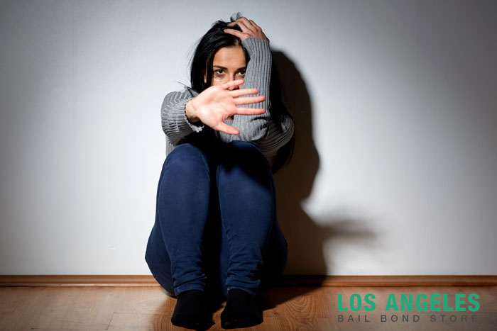 los angeles bail bond store domestic violence